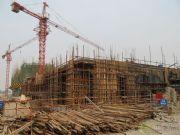 华强城卡塞雷斯3号楼工程进度图