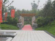 亚龙湾东湖实景图实拍