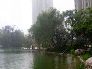 恒大绿洲湖景