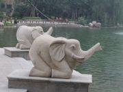 恒大绿洲大象型雕塑