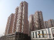 安阳义乌国际商贸城一期项目进度