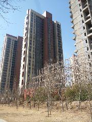 锦江城市花园施工现场