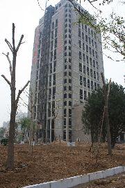 迎宾馆首府写字楼项目施工
