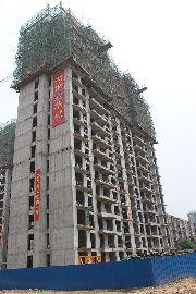 万和城8#楼建设实景图