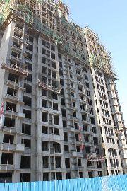 8#楼施工进度实景图