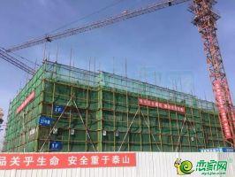 建业桂园东府实景图(2019.04.24)