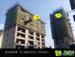 嘉洲·纯墅枫景实景(2020.2.1)