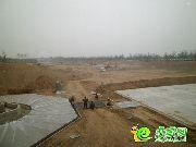 2014-4-20清山漫香林实景图