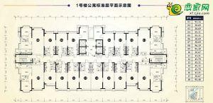 1#公寓标准层