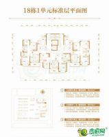 18号楼1单元标准层平面图