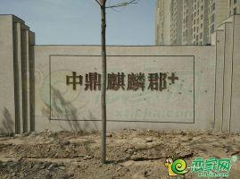 中鼎麒麟郡+实景图(拍摄于2018.04.10)
