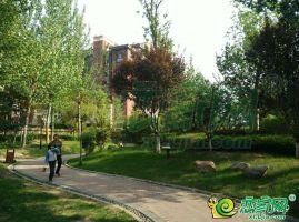 七拾九號院园林景观