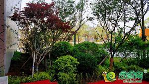 永康万国城园林实景图