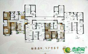27号楼标准层M/N户型图