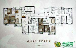 28号楼标准层O/P户型图