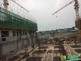 绿城诚园工程进度图(2018.06.17)