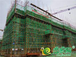 绿城诚园工程进度图2018.8.14