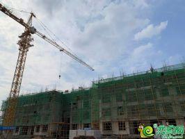 北区11#楼工程进度2019.7.12