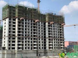 南区9#楼工程进度2019.7.12