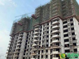 南区11#楼工程进度2019.7.12