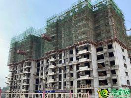 南区13#楼工程进度2019.7.12