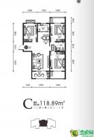 10#11#楼高层-C户型图118.89㎡