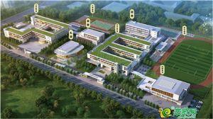 邢东新区重点公立中小学规划图