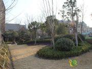 绿都温莎城堡实景展示