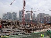 金谷阳光地带5月13日工程进度图