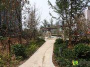 绿都枫景上东小区景观