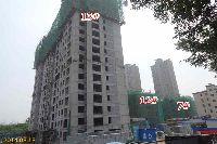 金谷东方广场12#、13#、7#楼已封顶