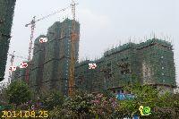 宝龙城市广场4#、5#、6#、7#楼工程进度