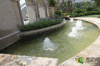 建业壹号城邦小区喷泉美景