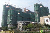 宝龙城市广场3#、6#、7#、10#、11#楼项目进度