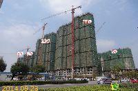 宝龙城市广场7#、8#、9#、10#、11#楼项目进度