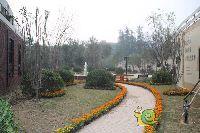 中波褐石公园园林景色