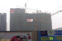 绿都枫景上东1#、12#楼工程进度