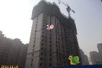 新科状元城1#楼项目进度