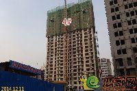 新科状元城4#楼项目进度