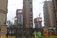 建业壹号城邦9#、10#、11#楼项目进度(2015.04.02)
