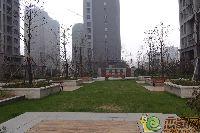 绿都枫景上东小区实景