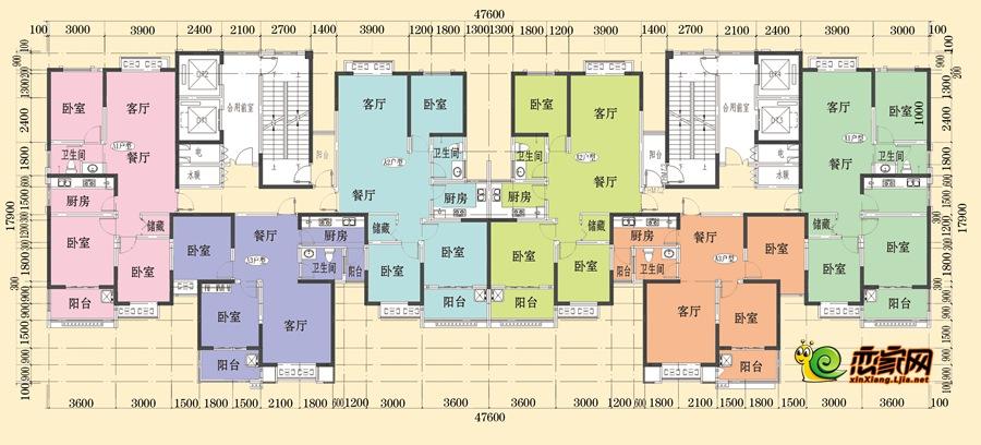 6#楼平面图