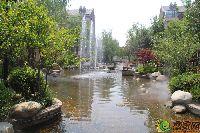 """绿都温莎城堡""""水""""意盎然"""