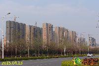 发展红星城市广场实景