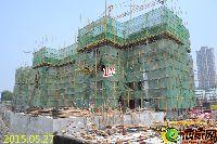 新乡林溪湾1#楼正进行第5层墙柱支模施工