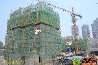 新乡林溪湾2#楼第6层顶层模板已浇筑