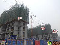 星海国际工程进度(2015.06.10)