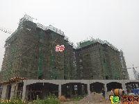 蓝葆湾6#工程进度(2015.07.17)