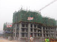蓝葆湾22#、31#工程进度(2015.07.17)