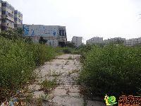 书香门第项目实景(2015.09.01)